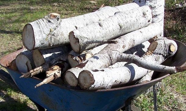 Какими дровами лучше всего топить дом