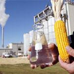 Биомасса как альтернативный источник энергии