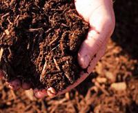 Использования биомассы для отопления - строительный журнал кадизз - статьи и заметки строителей, как для профессионалов так и для начинающих