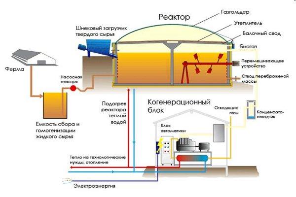 Краснодар, гку кк «центр энергосбережения и новых технологий»