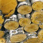 Топливо для печей и каминов. дрова и уголь для топки.