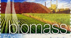 Биомасса использование биомассы