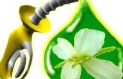 Биомасса: топливо и энергия » информационно аналитический портал энергетической отрасли россии — интерэнерго