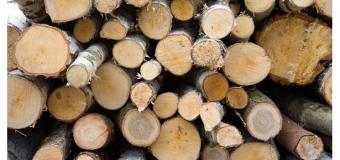 Доставка дров по ленинградской области