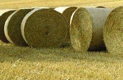 Использование биомассы для энергетических целей