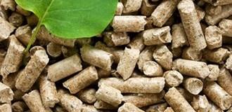 Отмена на ограничение по использованию биомассы