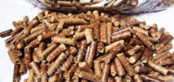 Утилизация древесных отходов p&b machine