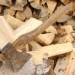 Выбор дров для камина