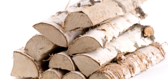 Дрова и щепа как топливо / статьи / пеллеты, брикеты и твердое биотопливо украина